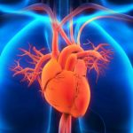 family pollution Can growth danger of heart attack