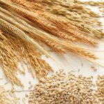 want to stay Longer? consume extra entire Grains