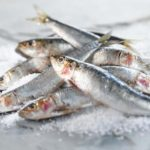 Toxic bacteria found in seafood samples