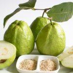 15 Incredible Benefits of Guava Leaf Tea
