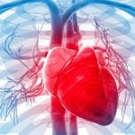 Sedentary Lifestyle Leading Cause For Heart Disease In India