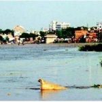 Polluted Ganga river can treat infections: Scientists