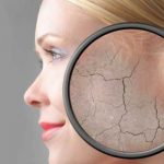 Natural Compound Can Reduce Signs of Ageing: Study