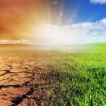 Climate Change: Low-Hanging Fruit, Ripe for The Picking