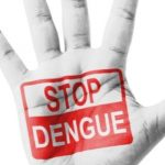 Dengue Claimed 179 Lives, no Death Due to Chikungunya: Government