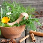 These Five Plants Can Improve a Room's Decor – and Your Health