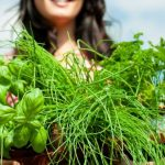 The top five healthy food trend predictions for 2015