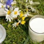 Raw Milk, Toned Milk and Other Types: Which One Does Your Family Need?