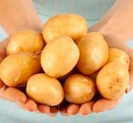 A potato-rich diet before pregnancy could up diabetes risk