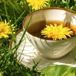 8 Amazing Benefits of Dandelion Tea for Your Health