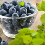 Grapes may shield you from Alzheimer's