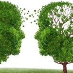 Defective Brain Cells Are Spreading Alzheimer's and Parkinson's