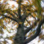 6 Effective Ways to Get Rid of Vertigo