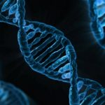 Gene Editing-Technique Can Help Identify CRISPR Mistakes