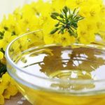 Wondering which cooking oil is good for you? Here are the pros and cons of canola oil